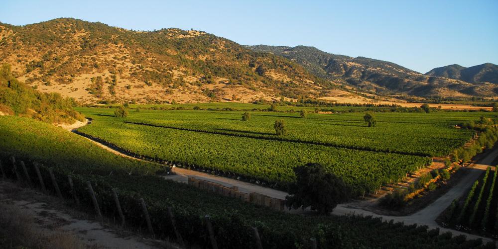 Valle de la Viña Santa Cruz