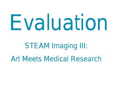 "Evaluation of the Online STEAM course ""Inside Out: 10 STEAM Evenings"""