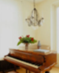 Castillo sn.br-Vienna-pianoo 2.jpg
