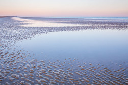 Camber Sands Ripples - 6026.jpg