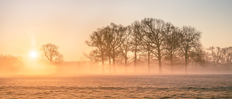 Autumn Sunrise-4324.jpg