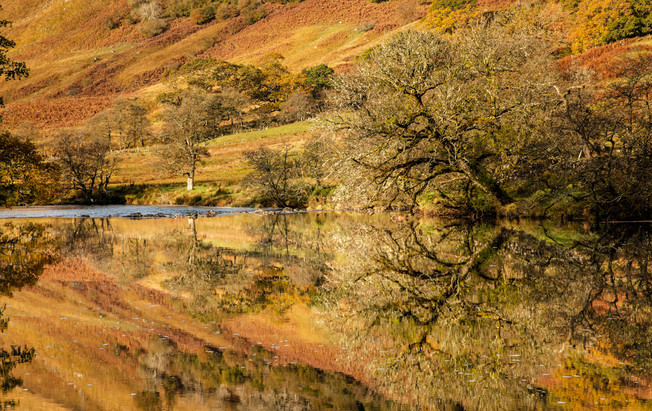 Glen Orchy River Reflections - Scotland
