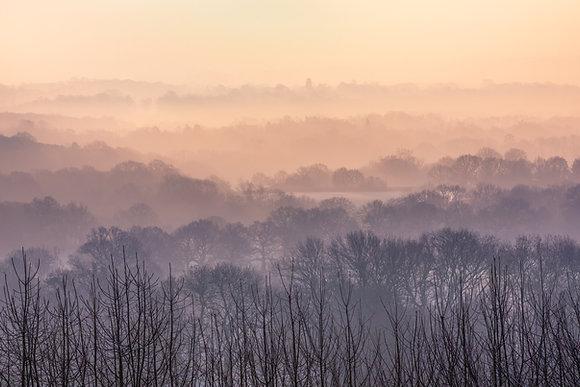Mist over the Weald