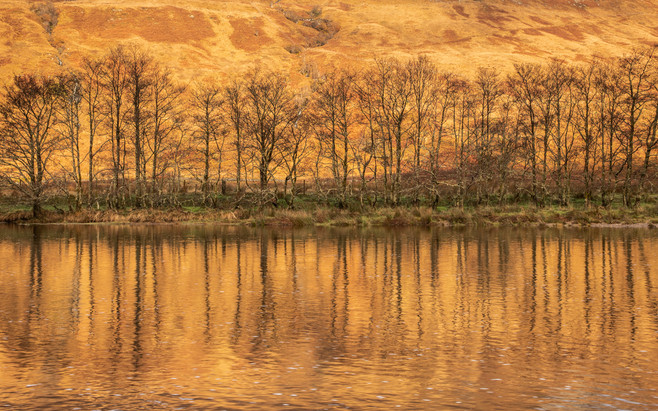 Glen Orchy Reflections - Scotland