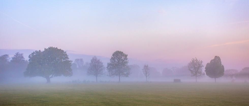 Mist over the Sportsground - 6719.jpg