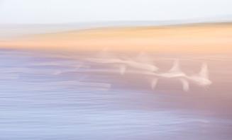 Camber Sands ICM-6257.jpg