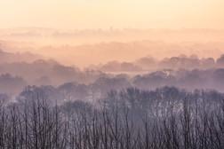 Misty Dawn over the Weald.jpg