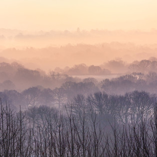 Misty Dawn over the Weald