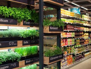 Exhibidor para plantas comestibles.