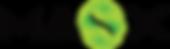 MasX logo.png