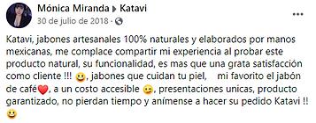 Testimonio Mónica Miranda.PNG