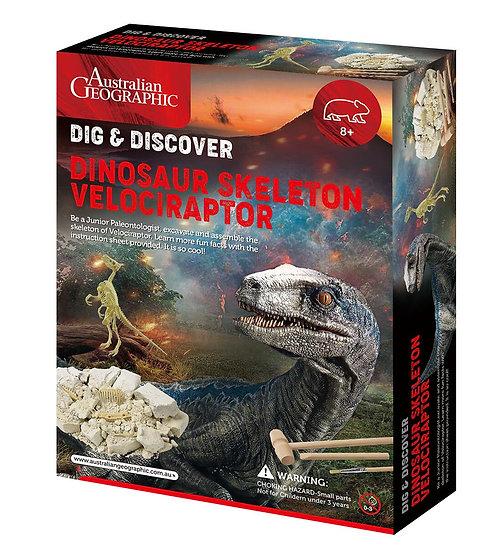 Australian Geographic: Dinosaur Fossil Kits Velociraptor
