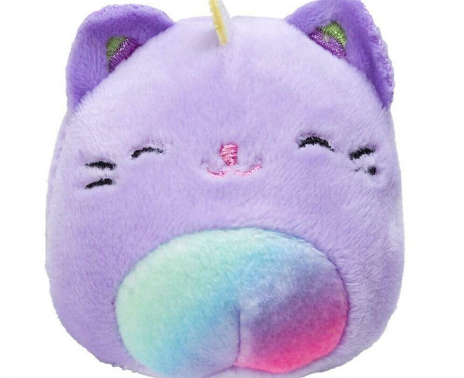 Squishmallows 2.5 inch Mystery Minis - Assorted