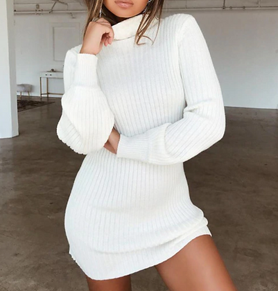 TURTLE NECK LONG SLEEVE SWEATER DRESS