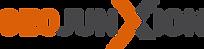 geoJunxion Logo.png