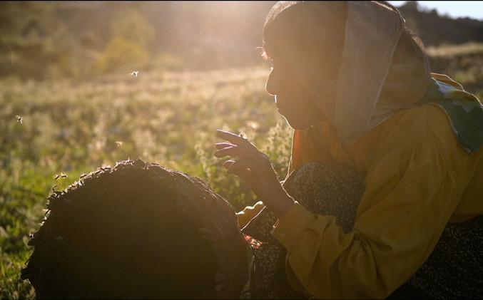 Honeyland_2_©_Trice_Films_:_Apolo_Media