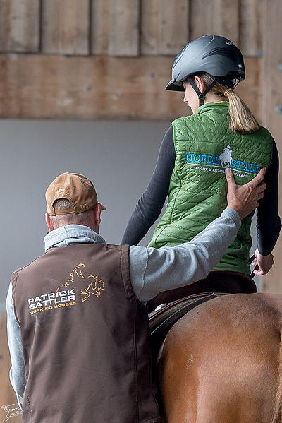Patrick Sattler Working Horses