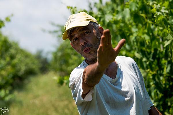 Etruscan Vine Azienda agricola Bio Tarazona Miriam