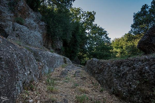 Necropoli Etrusca di Castel d´asso