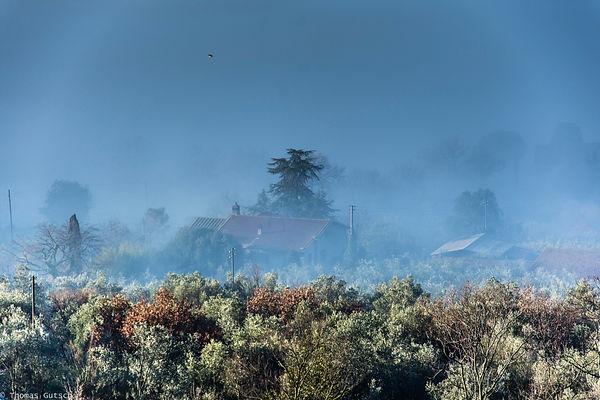 Morgennebel im Februar in Cegliolo