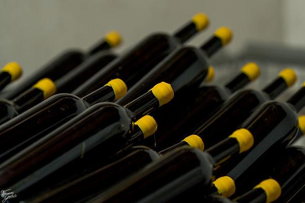 Etruscan Vine
