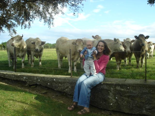 Nosey Bullocks