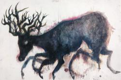 running-deer-lg-1500x1200