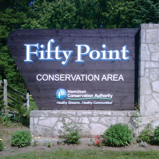Fifty Point