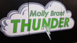 Hand painted school logos