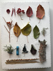 Finding color in all seasons