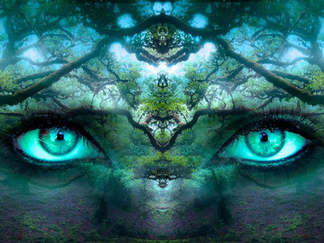 Was ist eigentlich…. die innere Wahrnehmung?