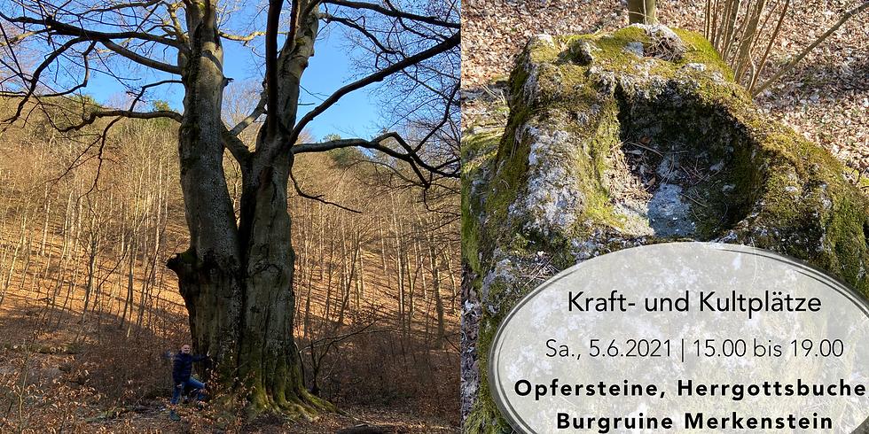 Kraft- und Kultplatz: Opfersteine, Herrgottsbuche und Burgruine Merkenstein