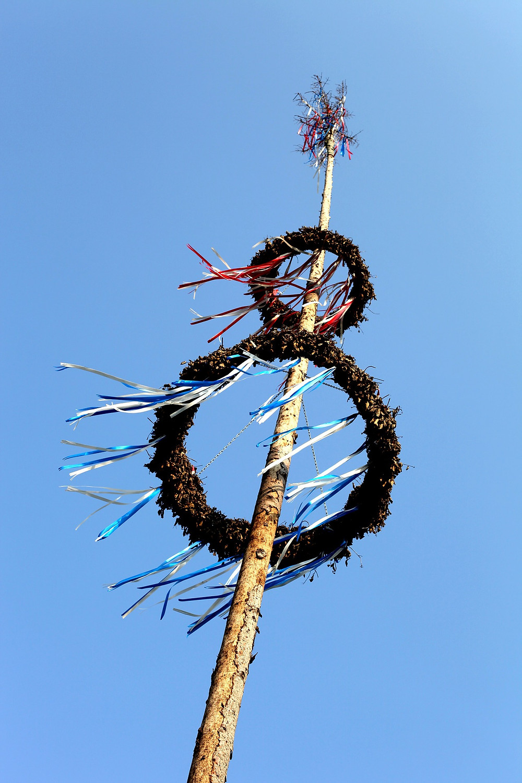 Der Maibaum - Jahreskreis Ritual