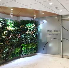 Fitness Center Living Wall Entrance