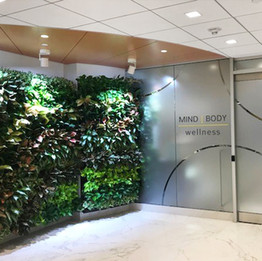Fitness Center Living Wall Entrance
