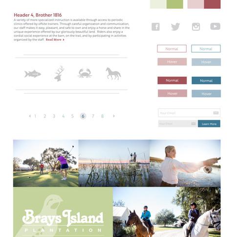Brays Island UI