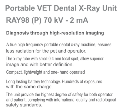 RAY98 P Brochure US Ver.03.png