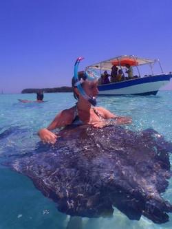 Moorea Deep Blue Whale Baleine dolphin dauphin