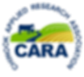 CARA logo_no background_edited.png