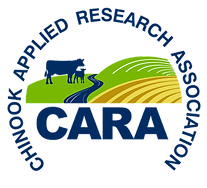 CARA logo_no background_edited.png