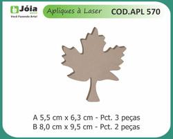 APL 570