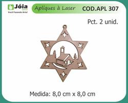 APL 307