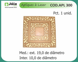 APL 300