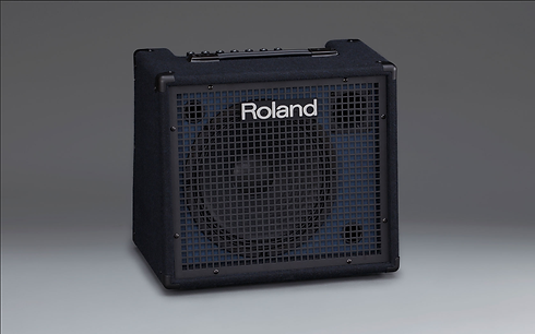 AMP ROLAND.png