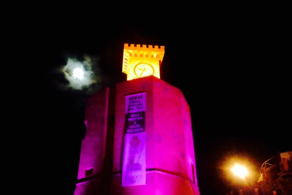 Torre Rio Marina