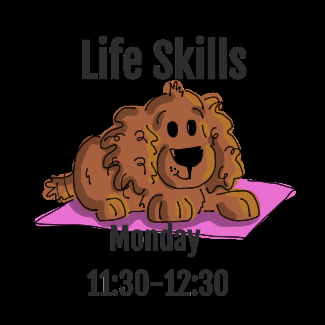 Life Skills- Monday 11:30-12:30
