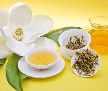 Herbología para la Ansiedad: L-teanina.