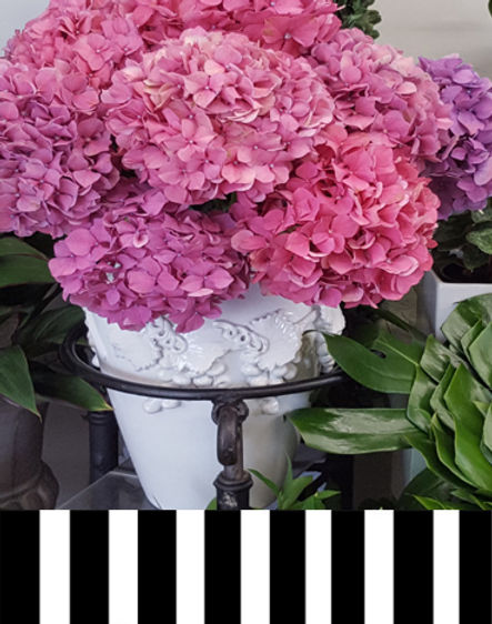 carlton flowers page 1a copy.jpg