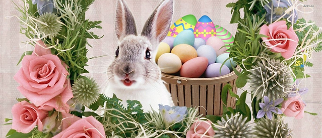 easter template for website.png
