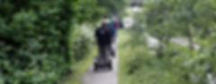 Segway Tour im Grünen